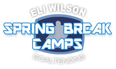 Eli Wilson Mentorship Program